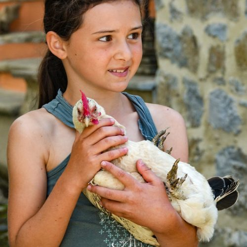 bimba con amica gallina